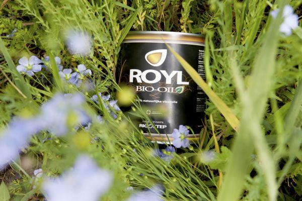 Rigo oil